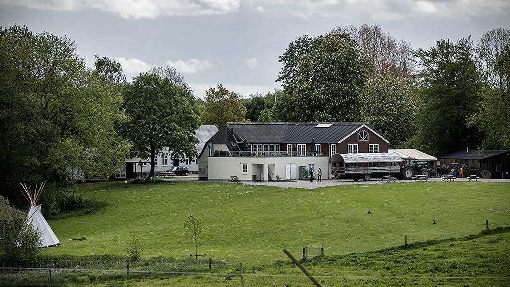 迪斯戴尔牦牛农场(Ditlevsdal Bison Farm)